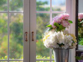 Kwiaty na okno - jakie wybrać?